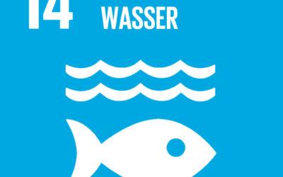 "Podcast ""Der Mensch braucht Meer"""