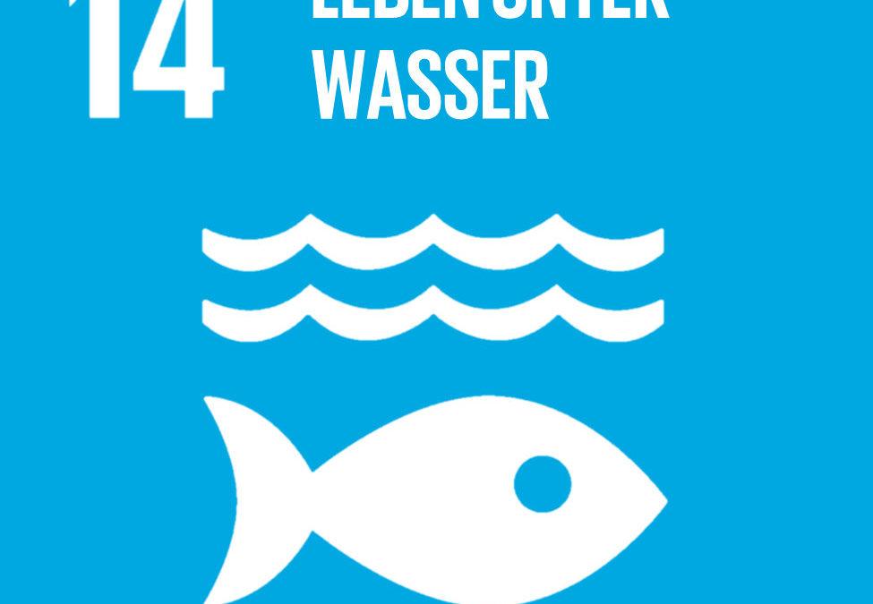 """Film zu Nachhaltigkeitsziel 14 """"Leben unter Wasser"""""""